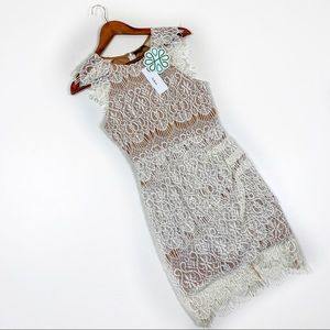 Aakaa Small lace nude bodycon dress new!